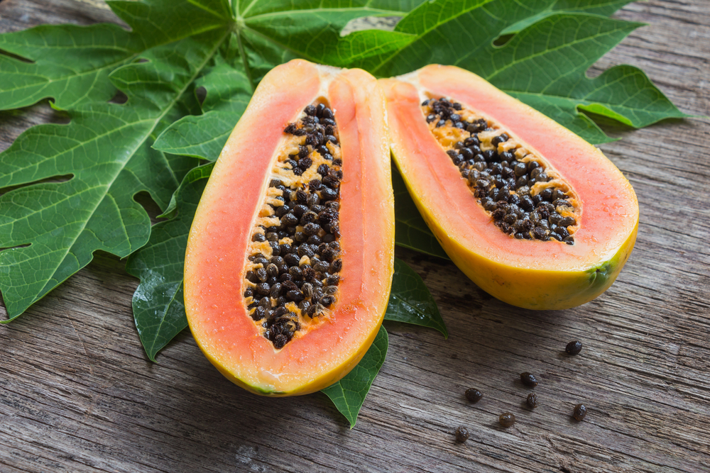 Papaya extract and sickle cell disease
