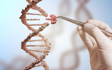 Gene Editing Tool May Be Key to New Therapies for Sickle Cell Anemia, Study Reports