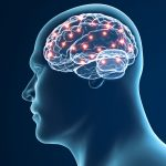 SCD, brain network, and chronic pain