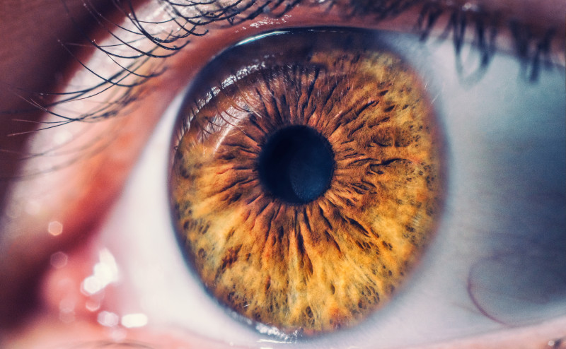 vision problems and SCD